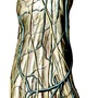The superficial nerves and veins of the dorsum of the foot.